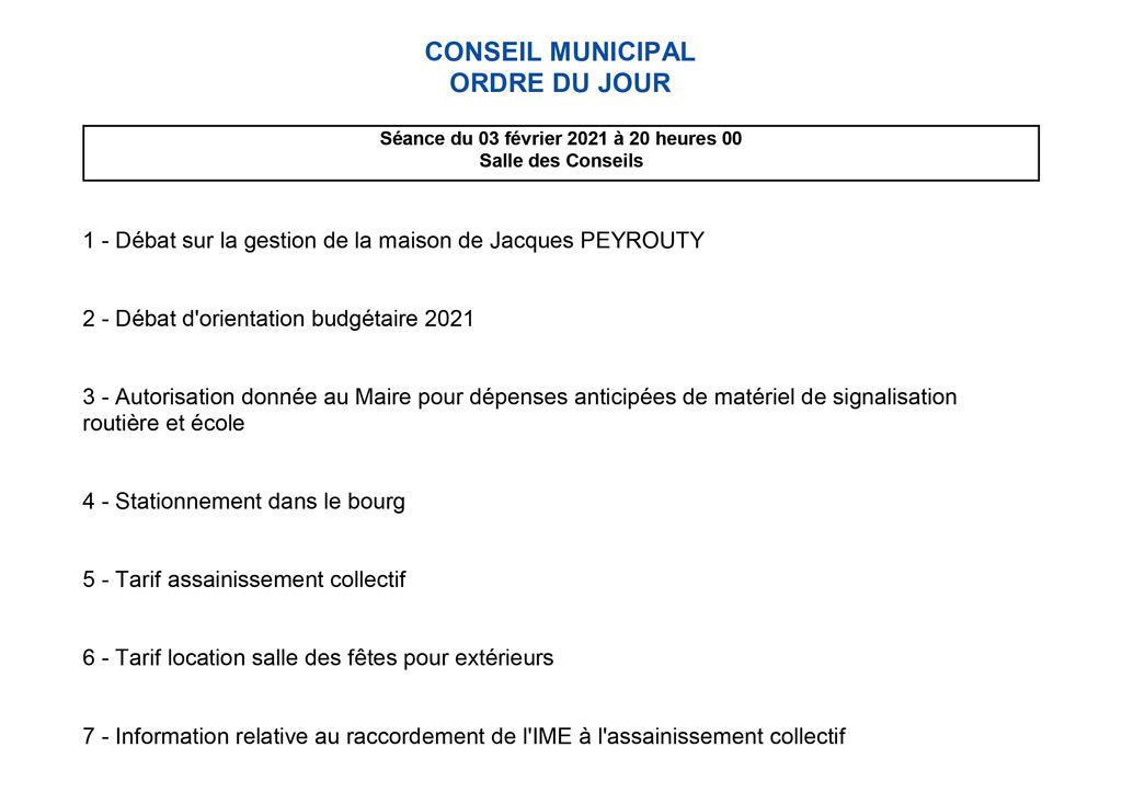 Conseil municipal - 3 février 2021